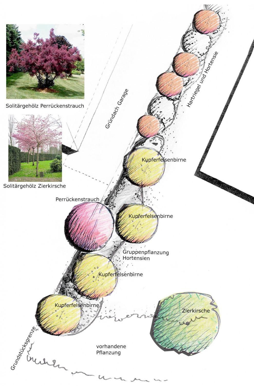 Naumann-Landschaft-Bepflanzungsplanung-22 Naumann – Landschaft