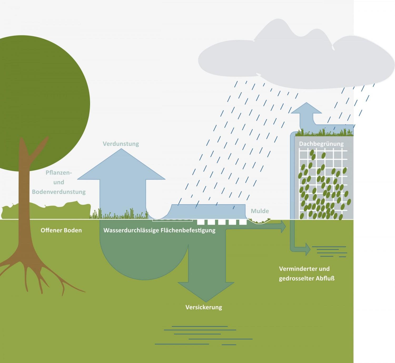 Naumann-Landschaft-Regenwassermanagement-26 Naumann – Landschaft