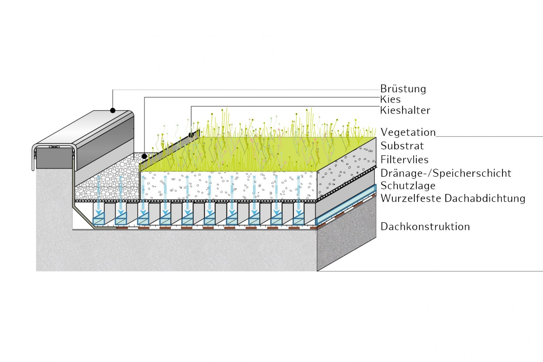 Naumann-Landschaft-Regenwassermanagement-28 Naumann – Landschaft
